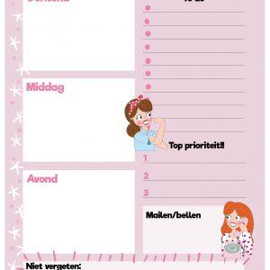 dagplanner-roze-lijst-annesara