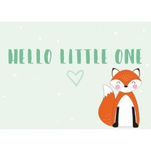 hello little one vos geboorte kaartje anne sara